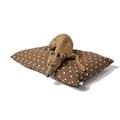 Cotton Top Day Bed - Dotty Chocolate