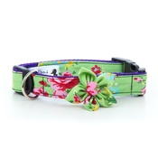 "Pet Pooch Boutique - Green Vintage Dog Collar with Flower 1"" Width"