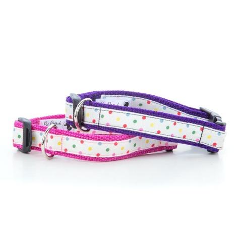 "Multi Dot Dog Collar - Purple 1"" Width 2"