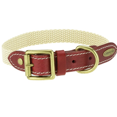 Astor Webbing Dog Collar – Burgundy