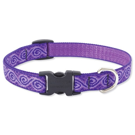 Jelly Roll Lupine Dog Collar