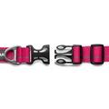 Hoopie Dog Collar - Wild Berry 2