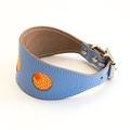 Sunset Blue Hound Collar 2