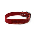 Red Cotton Webbing Dog Collar