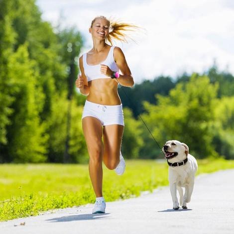 Lishinu Hand-free Retractable Dog Lead - Blue 4