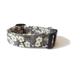 Willow Liberty Print Dog Collar