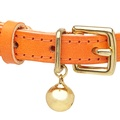 Leather Orange Cat Collar 2