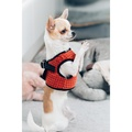 Soho Dog Harness - Orange 3