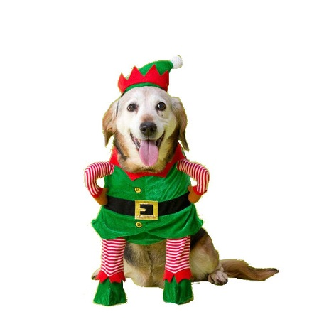 Christmas Elf Fancy Dress