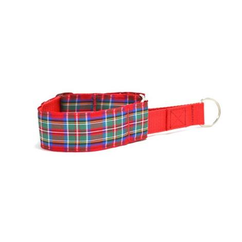 "Renfrewshire Martingale Collar 1.5"" Width"