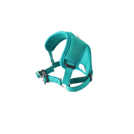 Neoflex Harness - Teal 2