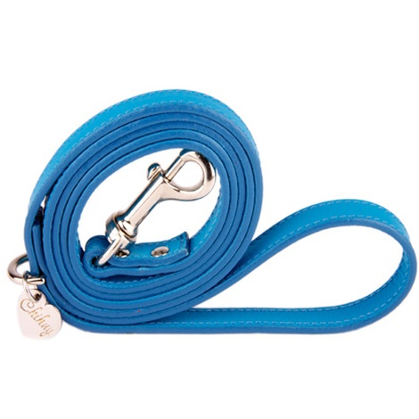 Heavenly Blue and Silver Luxury Leather Lead