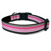 Woof and Meow - Neopolitan Stripe Dog Collar