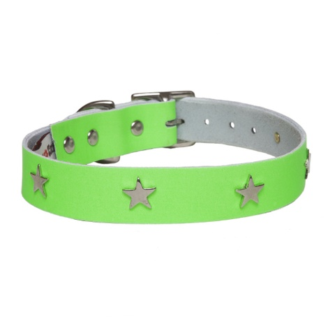 Galaxy Dog Collar - Green, Nickel Stars