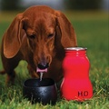 Red H2O Water Bottle 9.5oz 2