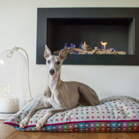 Luxury Pure Wool Dog Bed - Grey Multispot