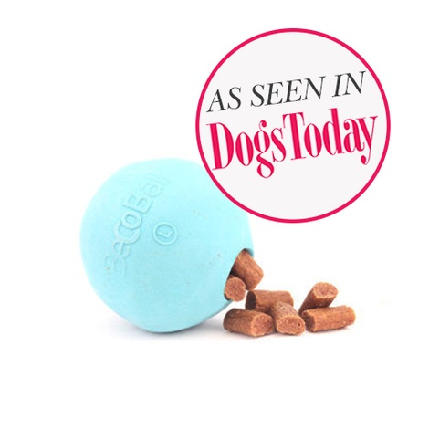 BecoBall Dog Toy - Blue