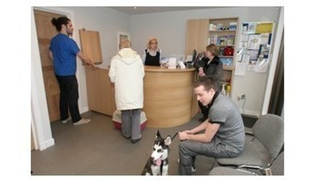 Queens Park Veterinary Surgery 2