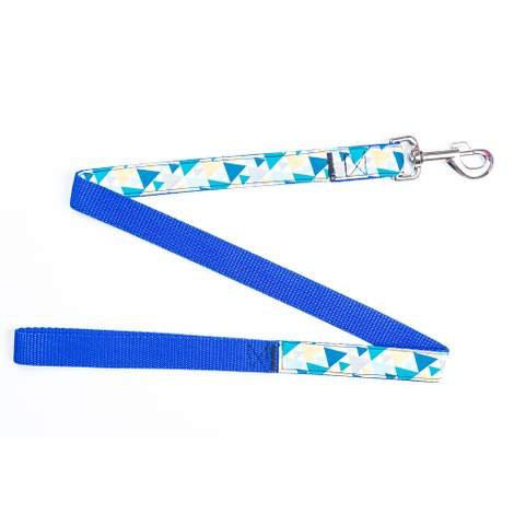 Picasso Dog Lead