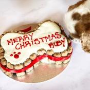 Arton & Co - Personalised Bone Christmas Cake