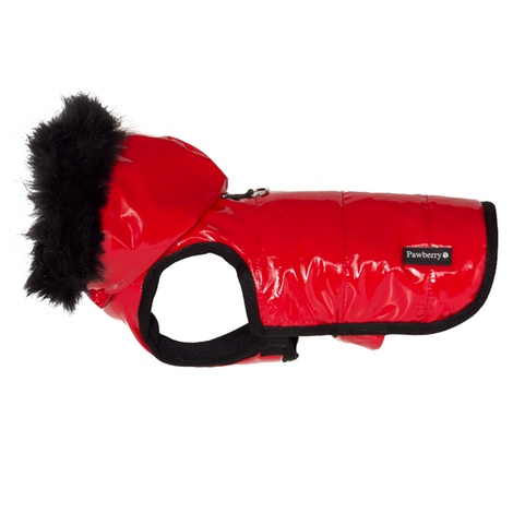 Brighton Bubble Hoodie Dog Coat - Red 2