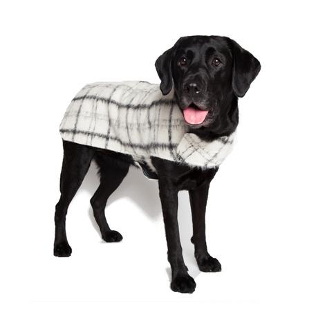 Luxury Black & White Check Mohair Dog Coat