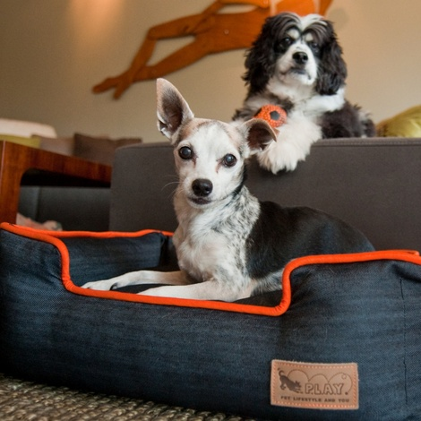 Urban Denim Lounge Dog Bed 5