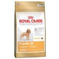Poodle 30 Dog Food