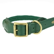 Clementine est. Dogs - Cecily Dog Collar - Green