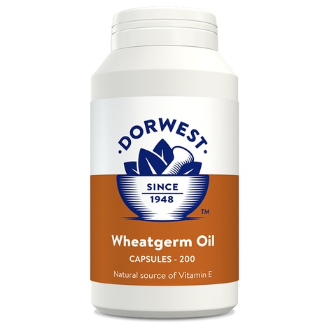 Wheatgerm Oil Capsules for Dogs and Cats 2