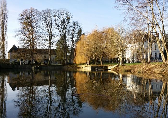 Le Chateau de la Motte - Benjy's Gite, France 1