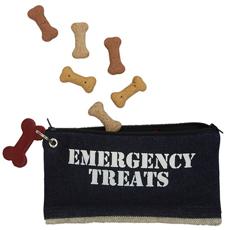 Fogle and Pole Emergency Treats Pouch
