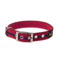 Bold Red Signature Range Collar