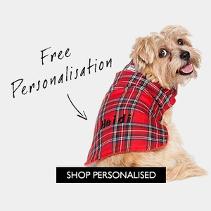 This exclusive collection has largely been inspired by you, our customers, and your feedback on what your furry friend needs