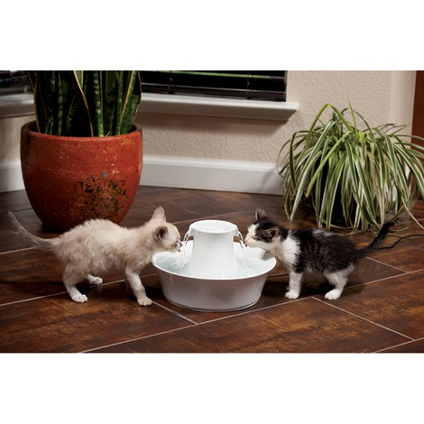 PetSafe® Drinkwell® Ceramic Avalon Pet Fountain 2