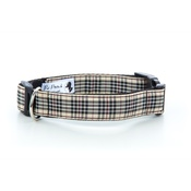 "Pet Pooch Boutique - Blackberry Collar  1"" Width"