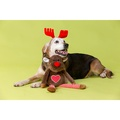 Plush Reindeer Dog Toy with Removable Antlers 2