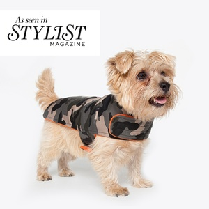 As temperatures drop, protect your pup from the elements with a winter coat.