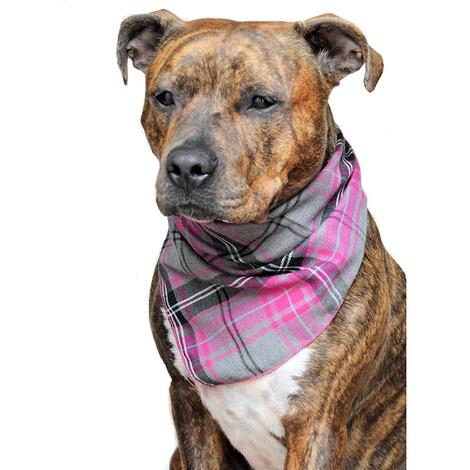 Pink Tartan Dog Bandana 2