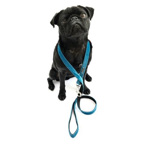 Dog Lead - Constantine 4