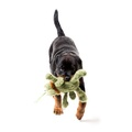 Scratchy the Flea Plush Dog Toy - Green