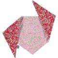 Daisy Dog Bandana – Pink & Red 2