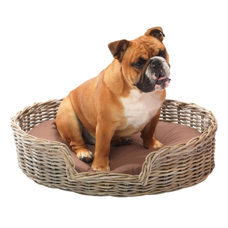 Rattan Kubu Dog Basket - Oval
