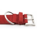 Nubuck dog collar - Como 4