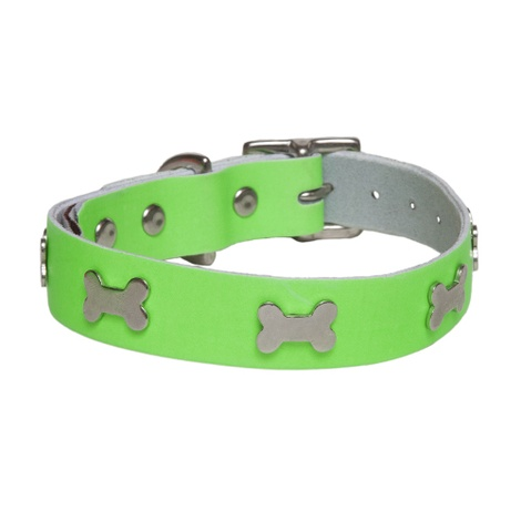 Galaxy Dog Collar - Green, Nickel Bones