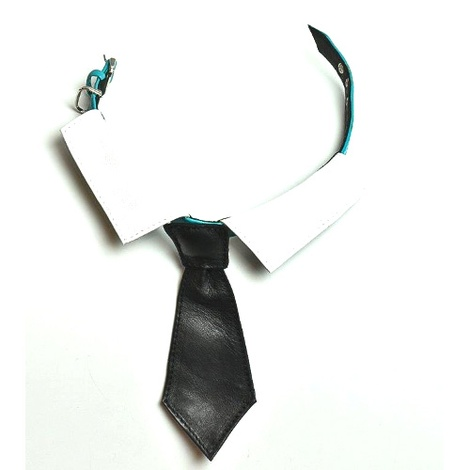 Richard Nixon Dog Tie - Black Check