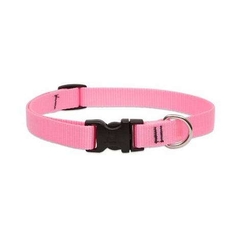 "3/4"" Width Pink Lupine Dog Collar"