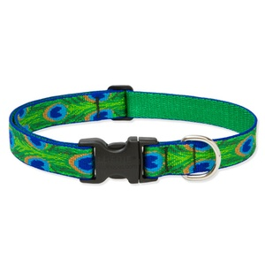 """3/4"""" Width Tail Feathers Lupine Dog Collar"""