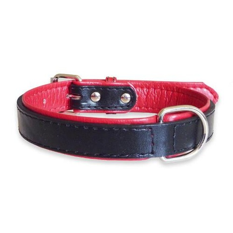 Fusion Black Leather Dog Collar