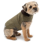 Mutts & Hounds - Forest Green Tweed Coat